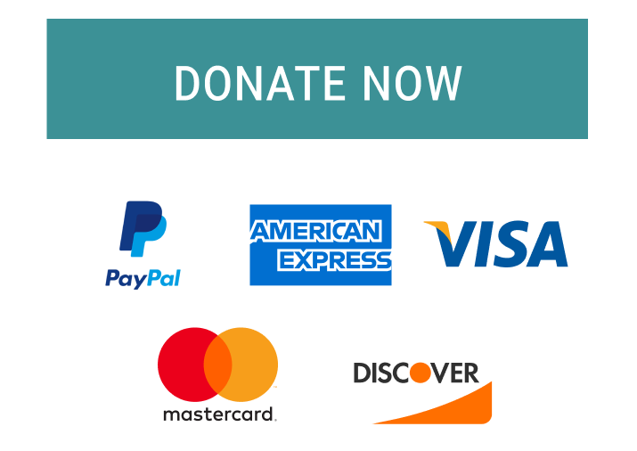 Donate button with credit card and paypal options